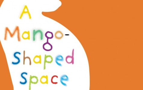 Book Review: A Mango Shaped Space