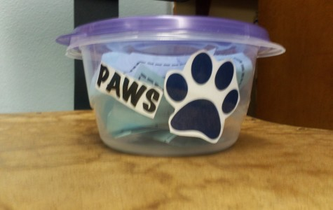 Bobcat Paws Incentive Programs