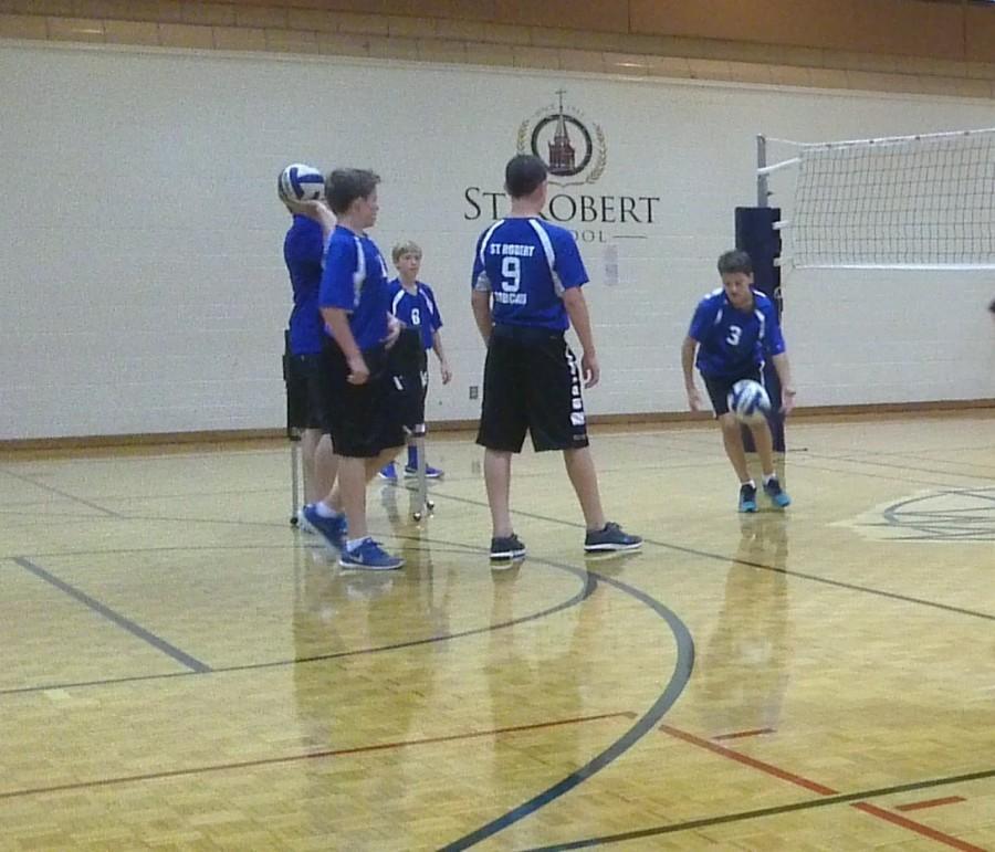 3 Coaches, 1 Team