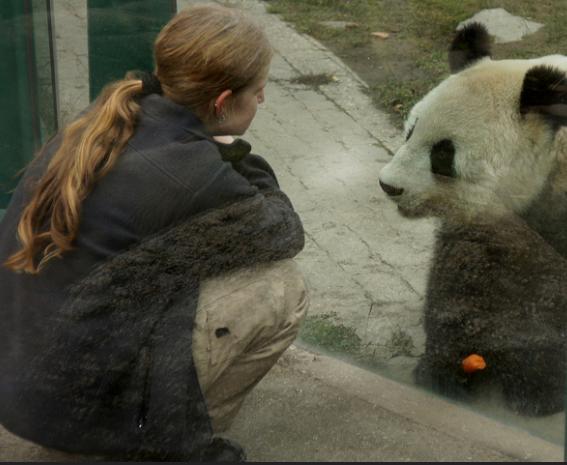 Zoo Worker